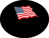 Dish Hoodie Satellite Dish Cover - US Flag